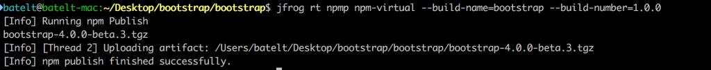 4 Publish npm packages