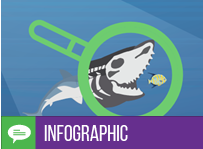 Infographic – DevSecOps: Sail the Seas Risk-Free