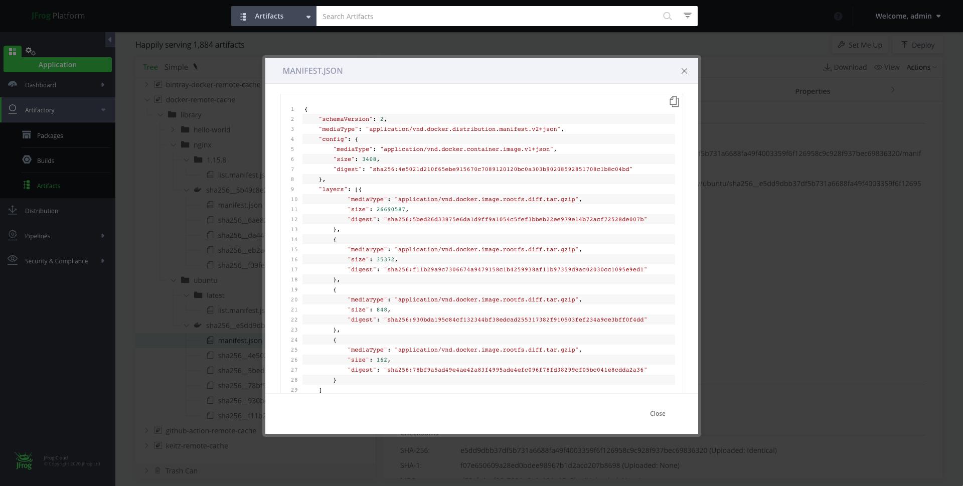 Manifest JSON file